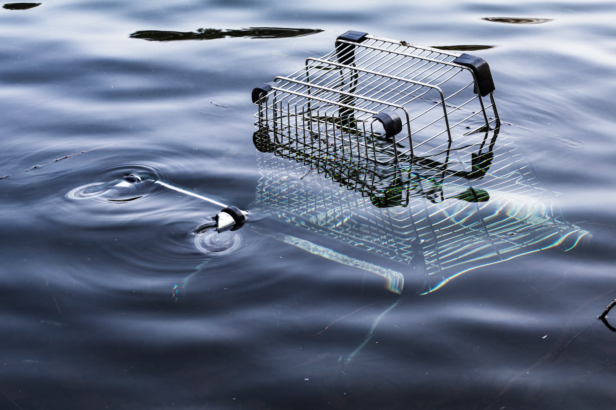 A shopping cart half submerged in a pond.